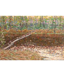 Pond. Viktor Kotov