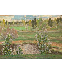 Bird-cherry Tree Blossoms. Viktor Kotov