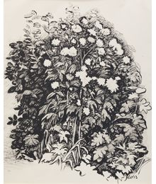 Flowers Etude. Sveshnikov A. V.