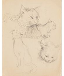 Cats. Sketches. Evsey Reshin