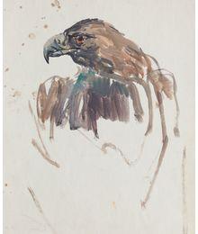 Birds. Sketch. Viktor Konovalov