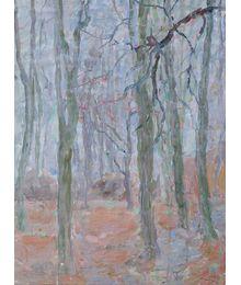 Spring in the Forest. Inna Mednikova