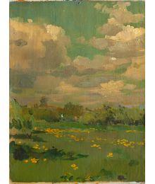 Flowering meadow. Vassily Minyaev